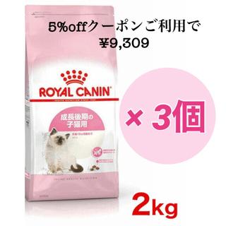 ロイヤルカナン キトン 子猫 ウェット&ドライ セット(ペットフード)