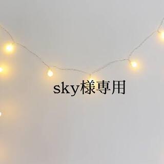 sky様専用(菓子/デザート)