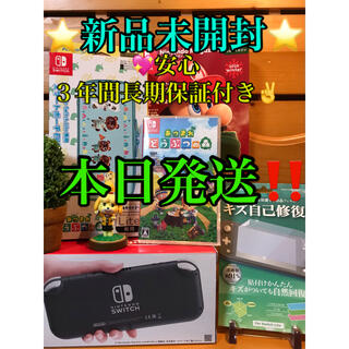 Nintendo Switch - Nintendo Switch Liteグレー 任天堂 スイッチ本体 ライト