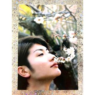 No.101 三浦春馬さん写真、天外者フライヤーラミネート