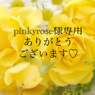 ●pinkyrose様専用●ヘアゴム バレッタ クリップ3点セット(バレッタ/ヘアクリップ)