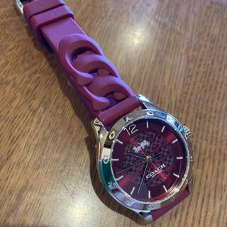 COACH - コーチ腕時計、パープルカラー