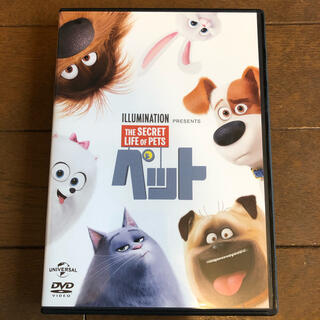 UNIVERSAL ENTERTAINMENT - ペット('16米)  DVD   THE SECRET OF PETS