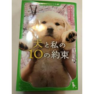 犬と私の10の約束(絵本/児童書)