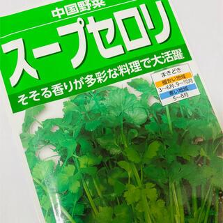 ハーブセロリ スープセロリ 野菜の種 30個(野菜)