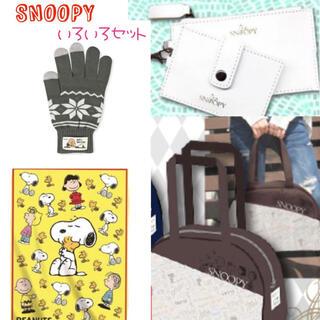 スヌーピー(SNOOPY)のスヌーピー セット ブランケット 手袋 ネックウォレット バッグ 新品 福袋(キャラクターグッズ)