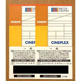 ユナイテッドシネマ シネプレックス 映画鑑賞券 2枚(その他)