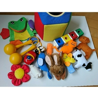 Disney - プレイアロングおもちゃ play along ディズニー英語システムdwe