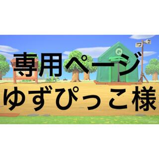 ニンテンドースイッチ(Nintendo Switch)の【ゆずぴっこ様専用です】(カード)