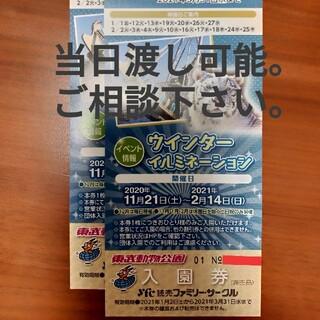 東武動物公園 入園券2枚(動物園)