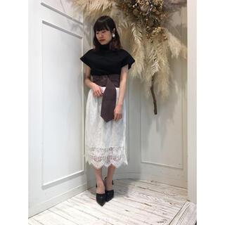 la belle Etude - ラベルエチュード  総レースタイトスカート
