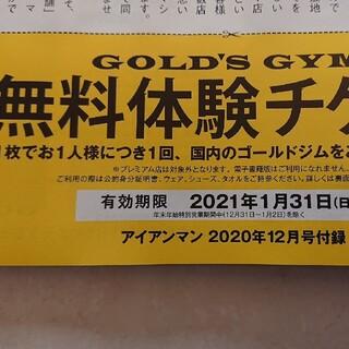 ゴールドジム 無料体験チケット2枚(フィットネスクラブ)