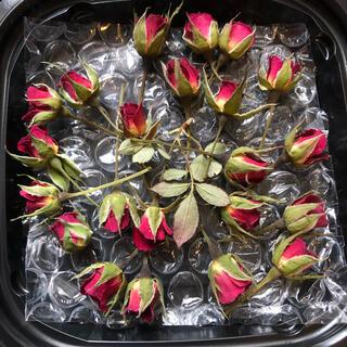 数量限定◎超ミニミニ20輪セット+おまけ2輪付き★ミニ薔薇★ドライフラワー★花材(ドライフラワー)