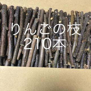 かじり木  りんご(小動物)