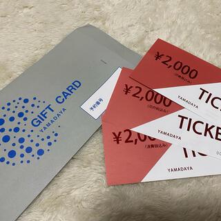 SCOT CLUB - ヤマダヤ チケット