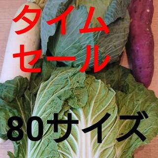 80センチ★5キロ入り★野菜詰め合わせセット★