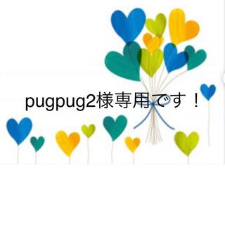 pugpug2様専用です!(その他)