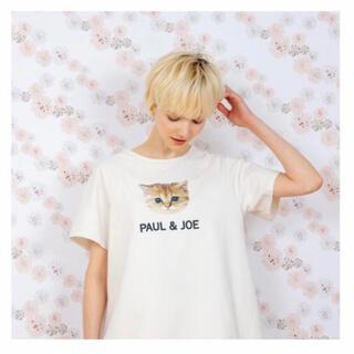 PAUL & JOE - ❤️ポール&ジョー❤️新品❤️ヌネット ロゴ Tシャツ❤️Mサイズ