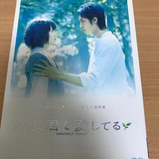ただ、君を愛してる スタンダード・エディション DVD(日本映画)