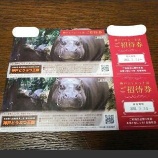 神戸どうぶつ王国 チケット(動物園)