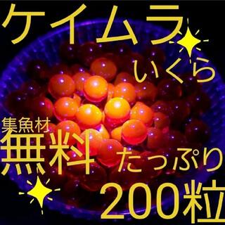 ケイムラ セール中☆ いくらルアー ルアー アジ メバル 餌釣り 穴釣り サビキ(ルアー用品)
