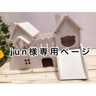 ハムスターペットラットマウストカゲ小動物用ハウス双子のお城家巣箱木箱おもちゃ遊具(小動物)