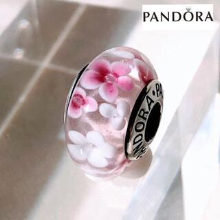 SWAROVSKI - 【新品】PANDORA パンドラ コラボ ビーズチャーム 小花 白 ピンク