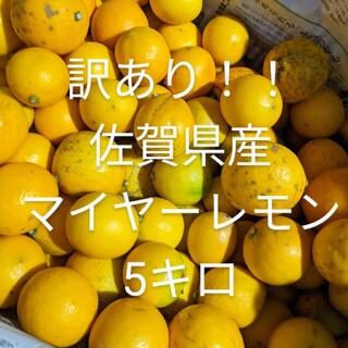 訳あり!レモン5キロ(フルーツ)