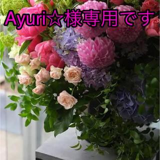 Ayuri☆様専用です(生地/糸)