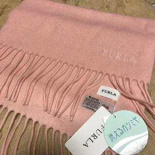 Furla - 【新品】フルラ カシミヤ100%  マフラー ピンク