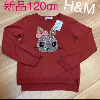 H&M - 新品✳︎ニットカットソー120cm