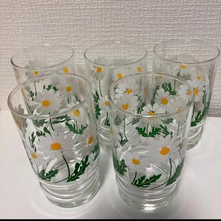 トウヨウササキガラス(東洋佐々木ガラス)のアデリア マーガレット グラス 5個セット 昭和レトロ 野ばな(グラス/カップ)