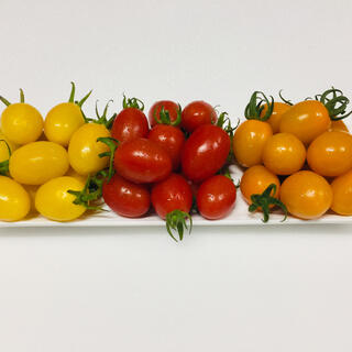 アイコ 3種 3kg(野菜)