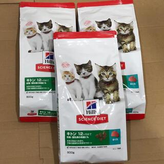 ヒルズスタイル(hills style)のヒルズ サイエンスダイエット 子猫用ドライフード キトン800g×3袋 まぐろ(ペットフード)