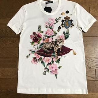 DOLCE&GABBANA - ドルチェ&ガッバーナ Tシャツ カットソー ネコ