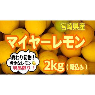 【現品限り!】希少❣️マイヤーレモン2㎏(送料込み)/果物 レモンみかん(フルーツ)