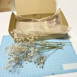 かすみ草 ドライフラワー 花材 スワッグ カード ハンドメイド 材料(ドライフラワー)