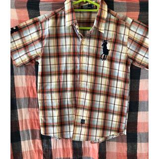 ポロラルフローレン(POLO RALPH LAUREN)のpolo 夏服 シャツ (シャツ)