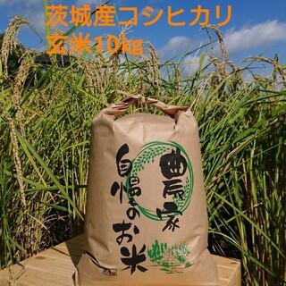 茨城令和2年産コシヒカリ玄米10㎏(米/穀物)