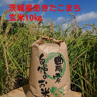 茨城令和2年産あきたこまち玄米10㎏(米/穀物)