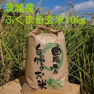 茨城令和2年産ふくまる玄米10㎏(米/穀物)