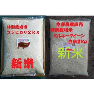 ★新米★[白米]特別栽培米コシヒカリとミルキークイーン2kgづつセット減農薬栽培(米/穀物)