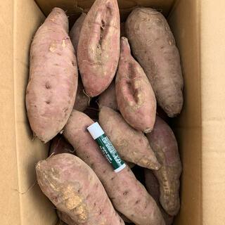 B級品 無農薬紅はるか 紅さつま 10キロ(野菜)