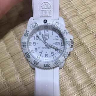 ルミノックス(Luminox)のLUMINOX ダイバーズウォッチ ホワイト(腕時計(アナログ))