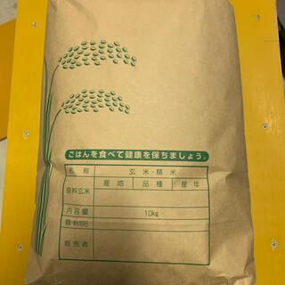 農家直送 ヒノヒカリ (令和元年度米) 1等精米 正味10㎏ 数量限定(米/穀物)