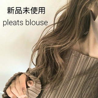 ZARA - 新品 pleats blouse ボートネック ZARA canal acces