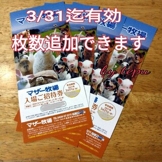 マザー牧場 入場 ご招待券1月特別価額 4枚 ~2021年3/31迄 (動物園)