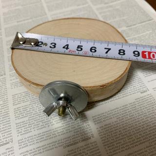 シラカバ 丸い止まり木 8-8.5cm(鳥)