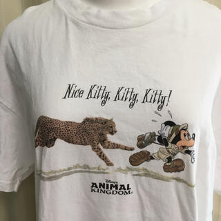 Disney - レア WDW アニマルキングダム ミッキー チーター Tシャツ フロリダ シャツ