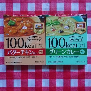 大塚製薬 - 新春セール☆大塚食品 マイサイズ バターチキンカレー&グリーンカレー
